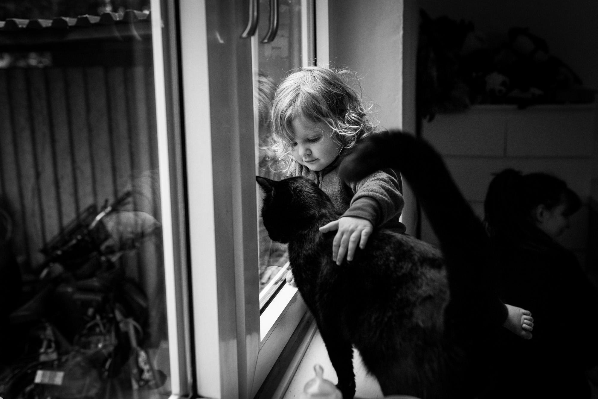 Mädchen umarmt zärtlich ihre Katze, beide sitzen auf einem Fensterbrett.